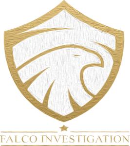 Logo del sito Falco Investigation Milano